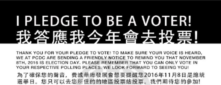 votingthisyear2016